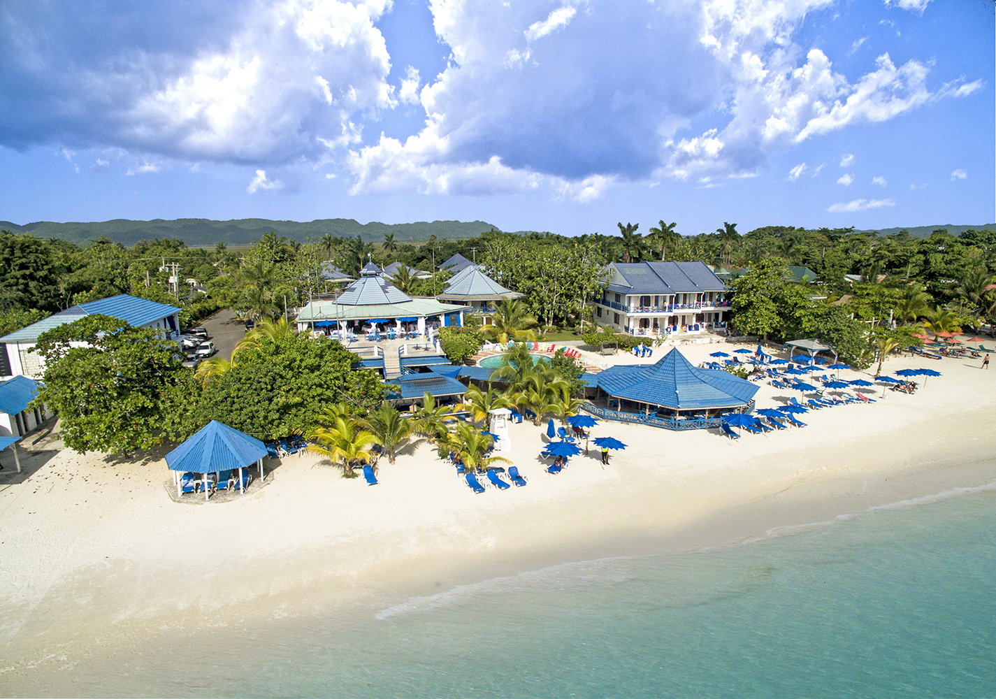 Treehouse Negril Aerial View